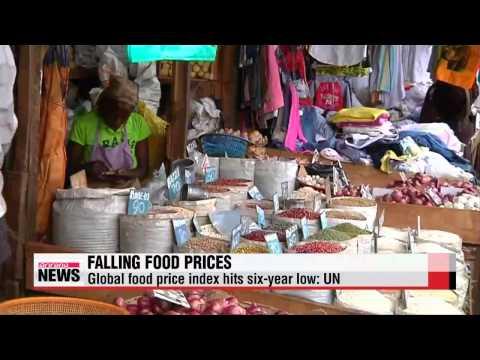 Global food price index hits six-year low: UN   지난달 세계식량가격지수, 2009년 9월來 최저