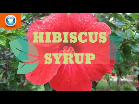 How To Make Hibiscus Syrup + More recipes | Cara Membuat Sirap Hibiscus + Resepi Lebih Lanjut! from YouTube · Duration:  6 minutes 14 seconds