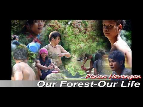 Boramai Punan (hovongan): Borneo's Tribe: Our Forest Our Life