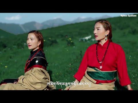 New Tibetan Song 2018 by Khawi Metog 4 ཁ་ཚིག་ལོག་མ་རྒྱག་གཉོར་ཚད་རེད།
