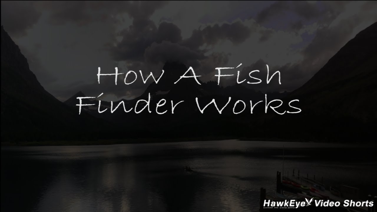 Hawkeye video short how a fish finder works youtube for How does a fish finder work