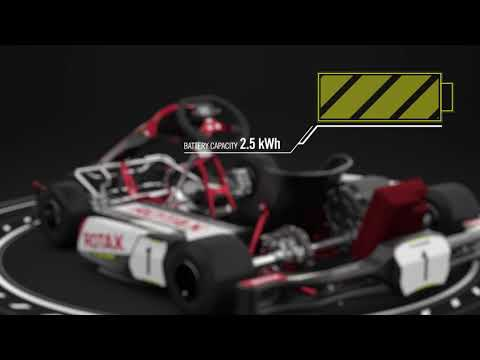 Rotax Kart Facts Video
