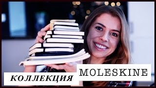 видео Ежедневники