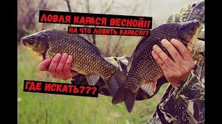 ЛОВЛЯ КАРАСЯ ВЕСНОЙ ГДЕ ИСКАТЬ И НА ЧТО ЛОВИТЬ КАРАСЯ Рыбалка Карась Ловля_карася Рыбалка