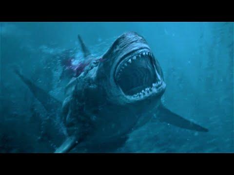 Shark : IL Primo Squalo - La Fine Del Megalodonte