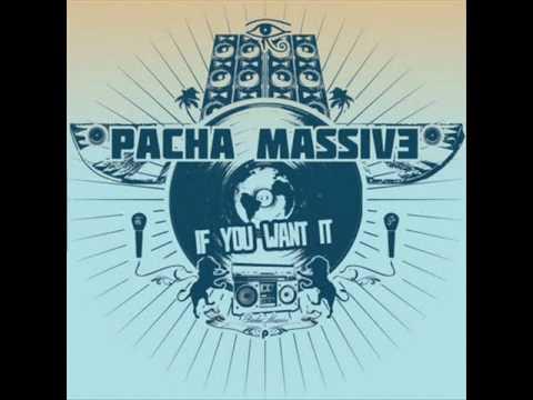 Pacha Massive - Just Want To See Ya