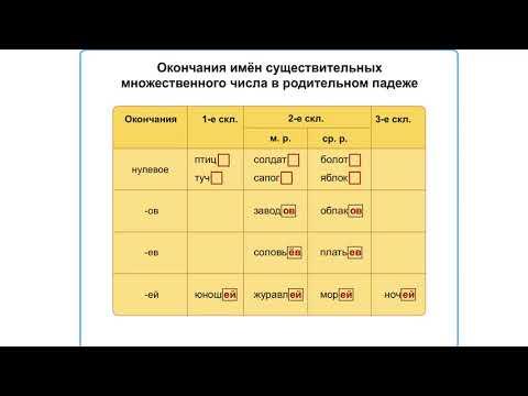 Правописание безударных падежных окончаний имен существительных во множественном числе