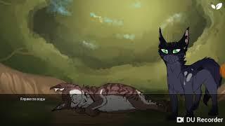 Мини-Фильм Коты Воители Послание Звёзд