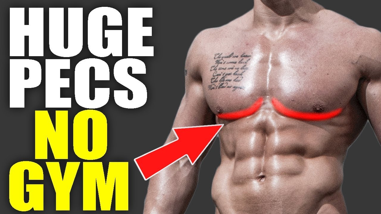 NEW Lower Chest Workout At Home NO EQUIPMENT OR GYM NEEDED (Defined Lower  Chest Exercises)