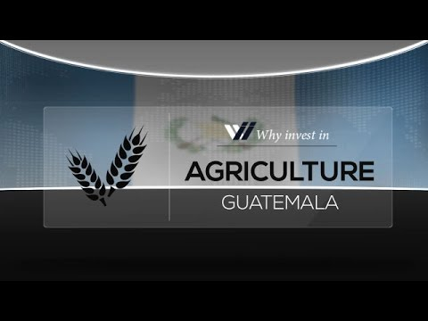 Agriculture  Guatemala - Why invest in 2015