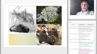Проектный урок как средство достижения метапредметных результатов: из опыта работы (биология)