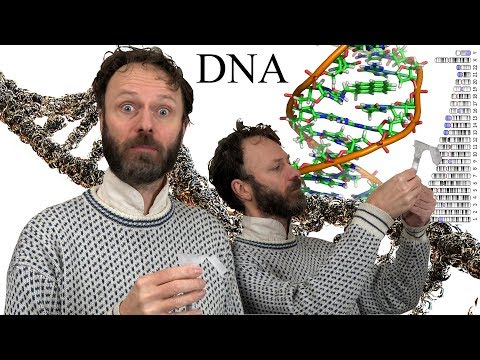 I'm taking a DNA test