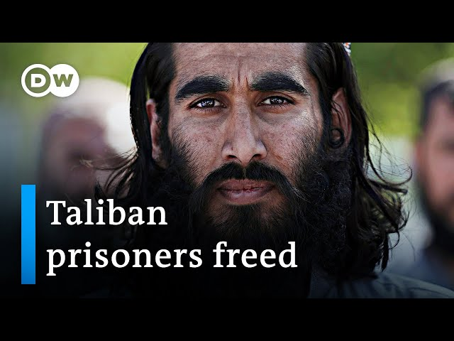 Afghan government frees hundreds of Taliban prisoners | DW News