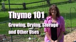 Thyme 101:  Growing, Drying, and Storing Thyme GOT BEES?