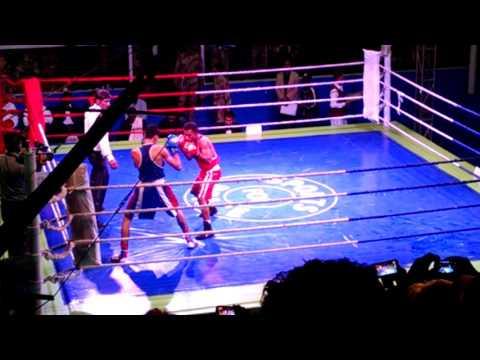 Nadir Boxer