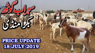 BAKRA MANDI SOHRAB GOTH GATE 4 Prices Update 18 July 2019 - Bakra Mandi Pakistan 2019