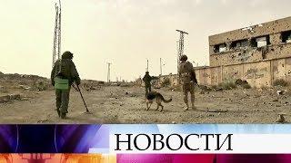 Российские саперы продолжают разминирование освобожденных районов Дейр-эз-Зора.