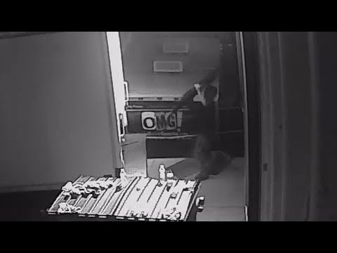 Video Game Truck Robbed