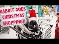 RABBIT GOES CHRISTMAS SHOPPING! 🐰🎄