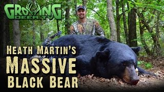 Bow Hunting BIG Bears and Whitetails: In Range and DOWN! (#256) @GrowingDeer.tv