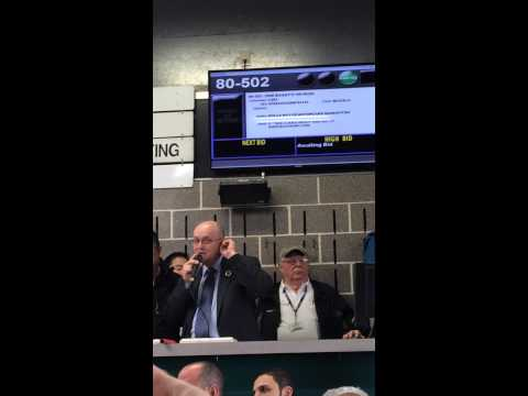 Bugatti Veyron auction March 20th 2014