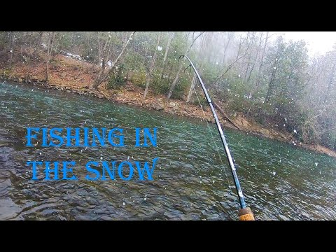 Fishing In The Snow - JUMBO Brownies On Penns Creek