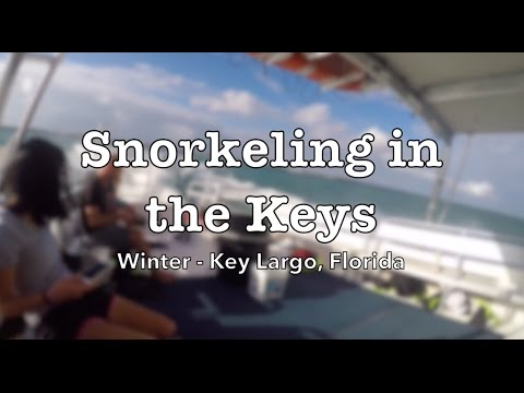 Snorkeling in Key Largo | Things to do in the Keys | Florida
