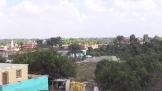 قناة السويس الجديدة : مشهد عام  عن بعد من أحدى حدائق المانجو المجاورة لقناة السويس