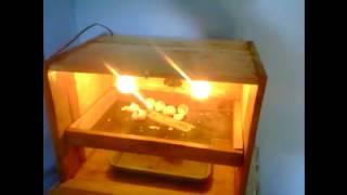 mesin Tetas sederhana telur ayam kampung Muna.avi