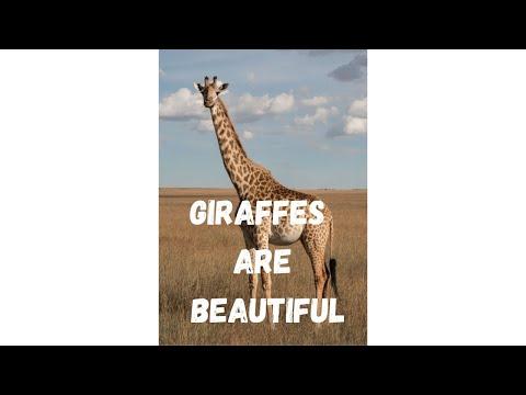 Giraffes Are Beautiful #shorts
