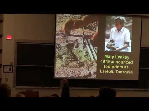 Michael Cremo - Forbidden Archeology