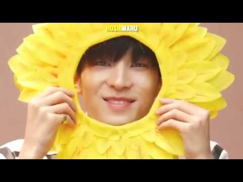 Seventeen WONWOO - Try Not To Smile Challenge