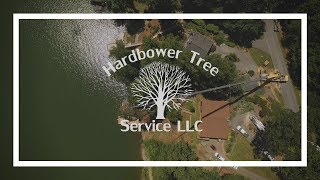 Crane Assisted Tree Removal | Smith Mountain Lake | Hardbower Tree Service
