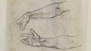 Forearm Anatomy - Anatomy Master Class