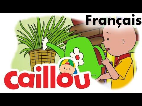 Caillou FRANÇAIS - Au service de Madame Howard (S05E19)   conte pour enfant   Caillou en Français