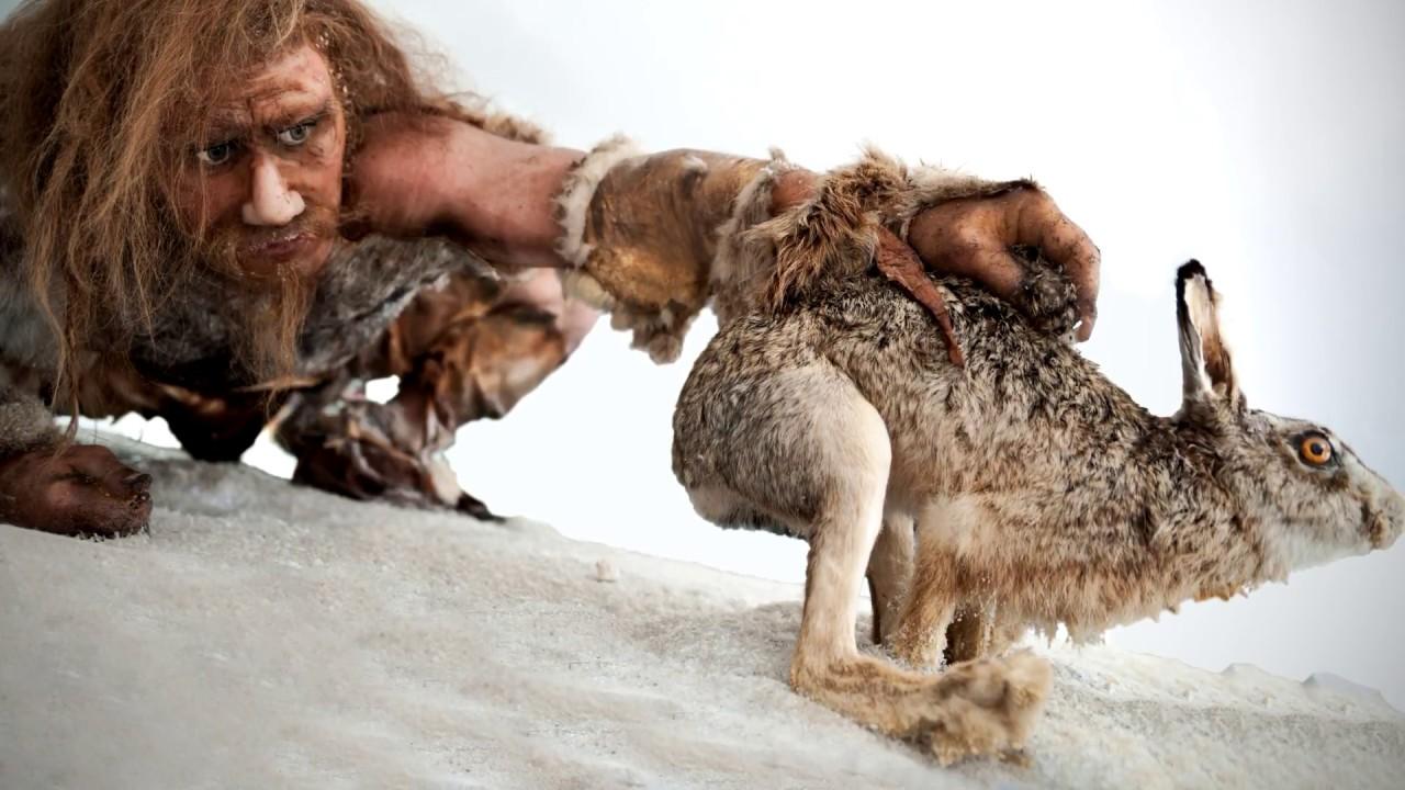 Как на самом деле охотились неандертальцы? #DARWINews 7.2.1