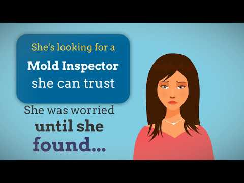 mold-inspection-and-testing-in-murrieta,-temecula,-menifee,-lake-elsinore,-perris,-wildomar,-hemet