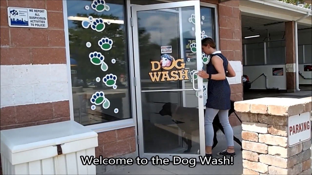 Self serve dog wash 625 adelaide st n london auto spa self serve self serve dog wash 625 adelaide st n london auto spa self serve car wash dog wash solutioingenieria Gallery