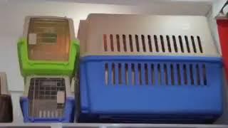 Royal Canin Baku - Ветеринарные препараты, кормы, атрибуты и другие товары для животных