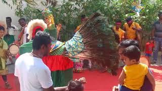 San Academy Pongal Celebration , Pongal Poikkal Kuthirai , Kids Celebration