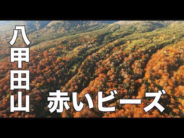 【紅葉・八甲田山・青森#152】「赤いビーズ」空撮・たごてるよし_AOMORI Aerial_TAGO channel