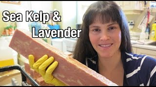 Sea Kelp & Lavender Cold Processed Soapmaking