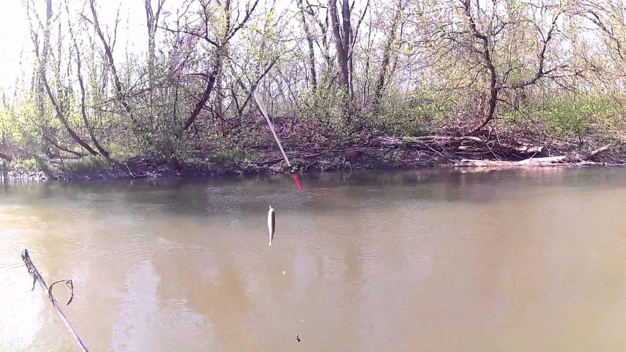 рыбалка в снежном донецкая область