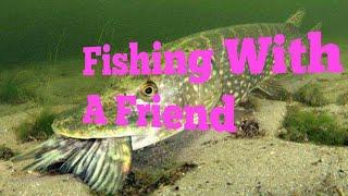 One day fishing adventure with my friend/കുട്ടുകാരനുമായുള്ള മീൻ പിടുത്തം