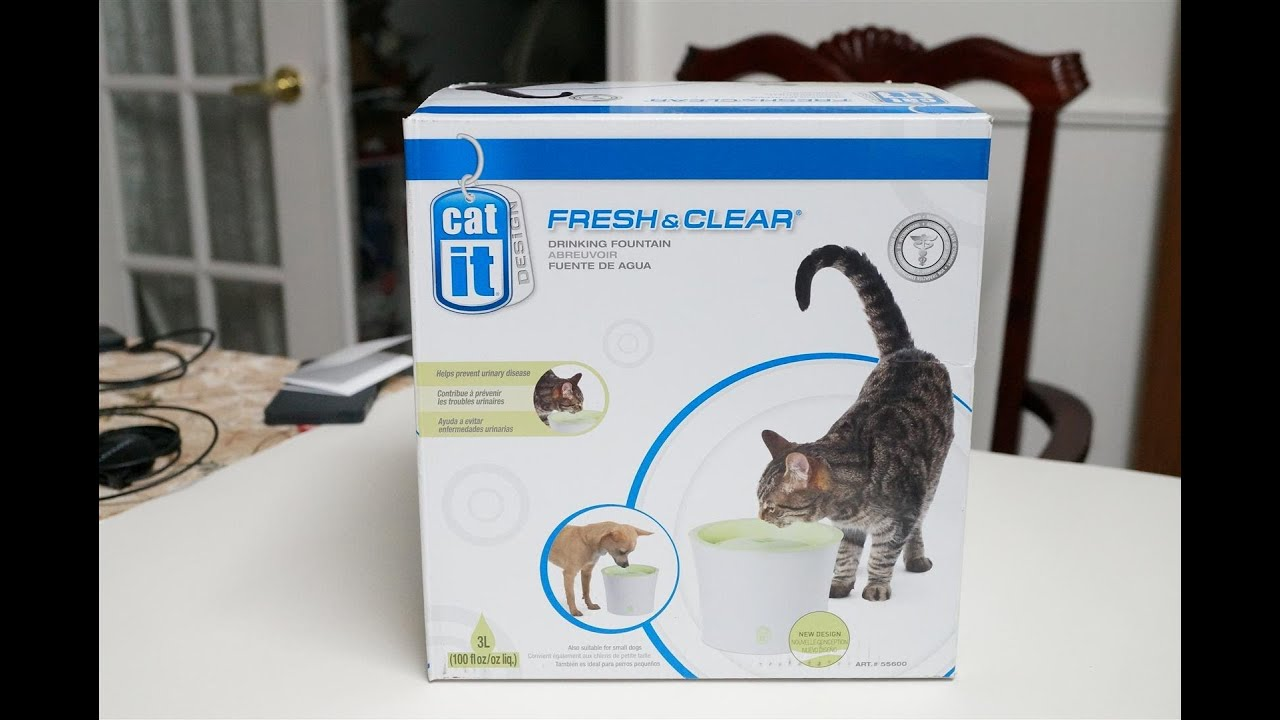 Hagen Catit Fresh And Clear Cat Drinking Water Fountain Youtube