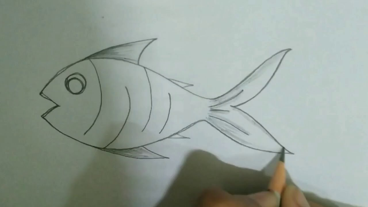Simple pencil drawings for kids / simple fish drawing ...