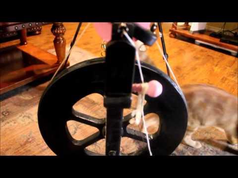 Introduction to my Ashford Kiwi spinning wheel