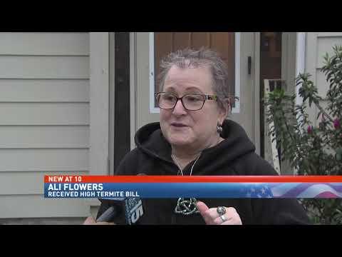 Mobile Residents See 4x Increase In Terminix Termite Bond Renewal Nbc 15 News Wpmi Youtube