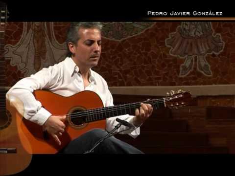 Pedro Javier Gonzalez Palau De La Musica Catalana Barcelona 2009 Catala Youtube