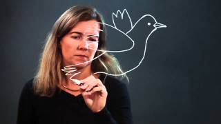 How to Draw a Dove Bird